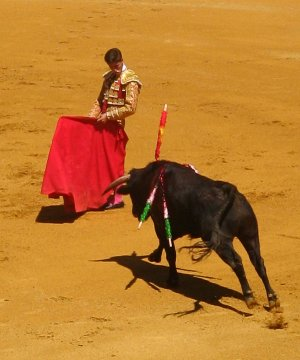 Bull_fighter_charge