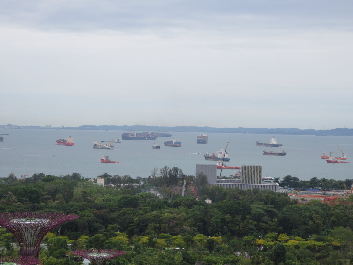 Singapore Container Ships