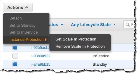 AWS Instance Protection
