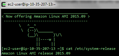 Amazon Linux AMI 2015.09